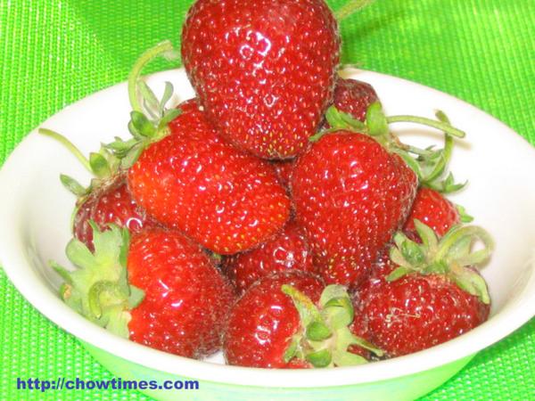 U_Pick_Strawberries-6