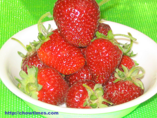 U_Pick_Strawberries-6