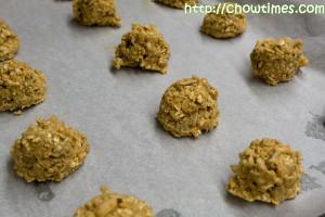 seedycookie-15-300x200