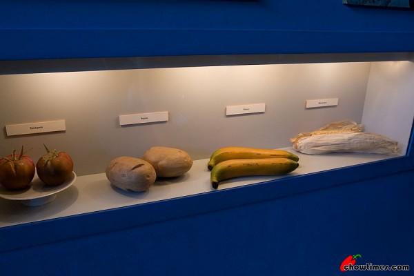 Barcelona-MaritimeMuseum12-600x400