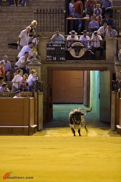Seville-Bullfighting-22-400x600