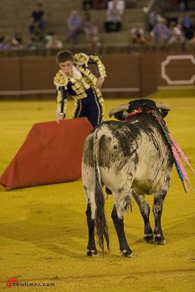 Seville-Bullfighting-23-400x600