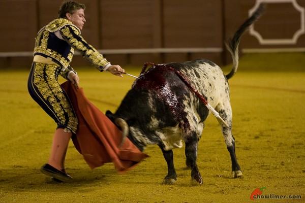 Seville-Bullfighting-8-600x400