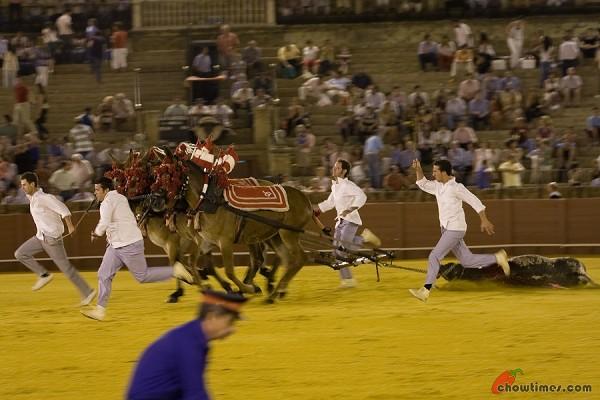 Seville-Bullfighting-9-600x400