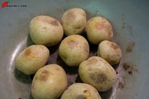 Wrinkled-Potato-11-300x200