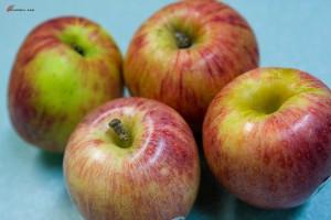 Canning-Apple-Sauce-1-300x200