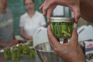 Canning-Beans-14