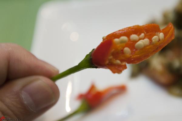 Burmese-Feast-Bo-Laksa-Hastings-4