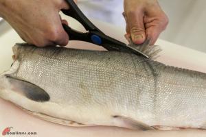 Canning-Salmon-2