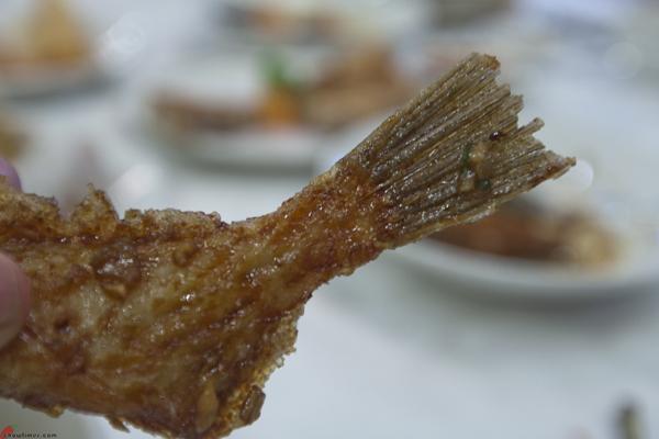 Shun-Feng-Village-Seafood-Richmond-18