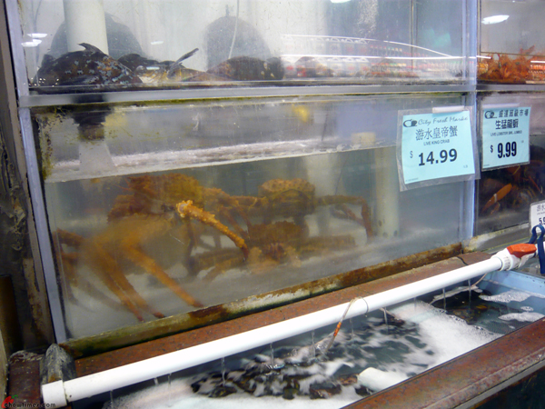 How-To-Buy-Alaskan-King-Crab-8
