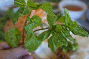 Green-Lemongrass-Richmond-15