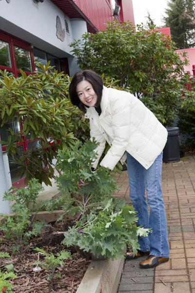 Garden-Harvest-9