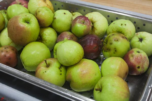 Canning-Apple-Ginger-Chutney-2