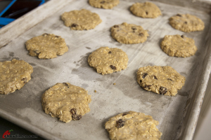 Dried-Fruit-and-Spice-Oatmeal-Cookies-13