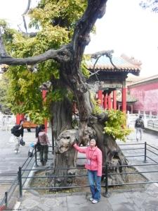 Beijing-Forbidden-City-24