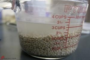 Mushroom-and-Barley-Soup2