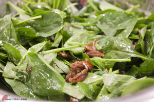 Spinach-Salad-with-Candied-Pecan-5