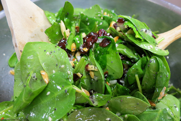 Cranberry-Almond-Spinach-Salad-7