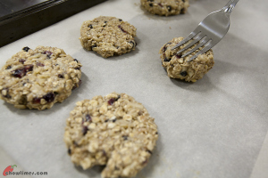 Oat-and-Fruit-Breakfast-Cookies-9