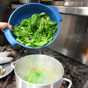 Lemon-Lentil-Spinach-Soup-12