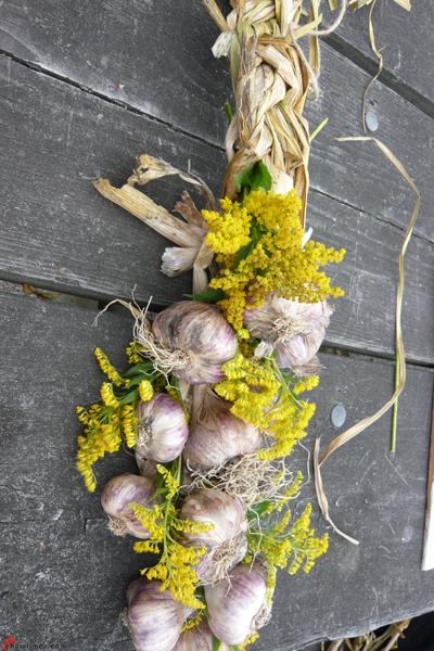 Garlic-Festival-2012-12