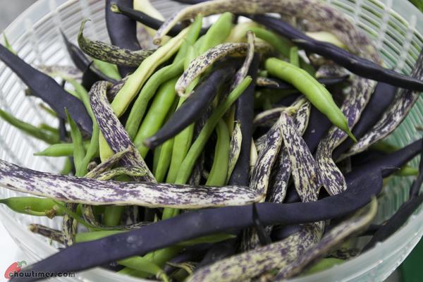 Green-Bean-Zucchini-Soup-11