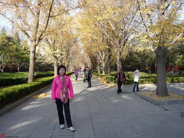 Beijing-Day-11-Lama-Temple-1