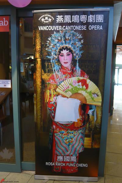 Cantonese-Opera-Costume-3