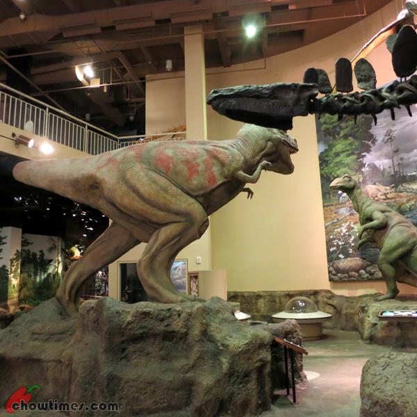 Atlanta-Day-5-Fern-Bank-Museum-of-Natural-History-03