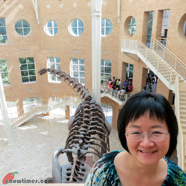 Atlanta-Day-5-Fern-Bank-Museum-of-Natural-History-05