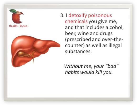 Liver-4
