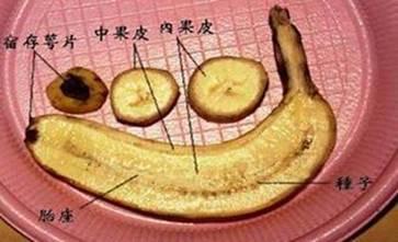 Dark-Spot-Banana-2