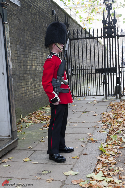 London-Day-3-Buckingham-Palace-15