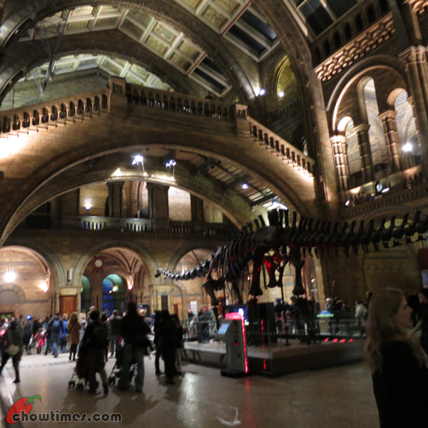 London-Day-8-Natural-History-Museum-08