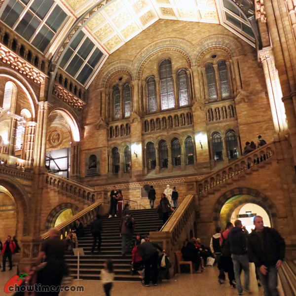 London-Day-8-Natural-History-Museum-10