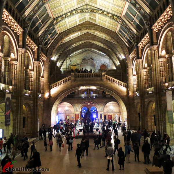 London-Day-8-Natural-History-Museum-13