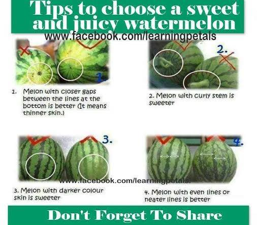 Tips to Choose a Sweet and Juicy Watermelon