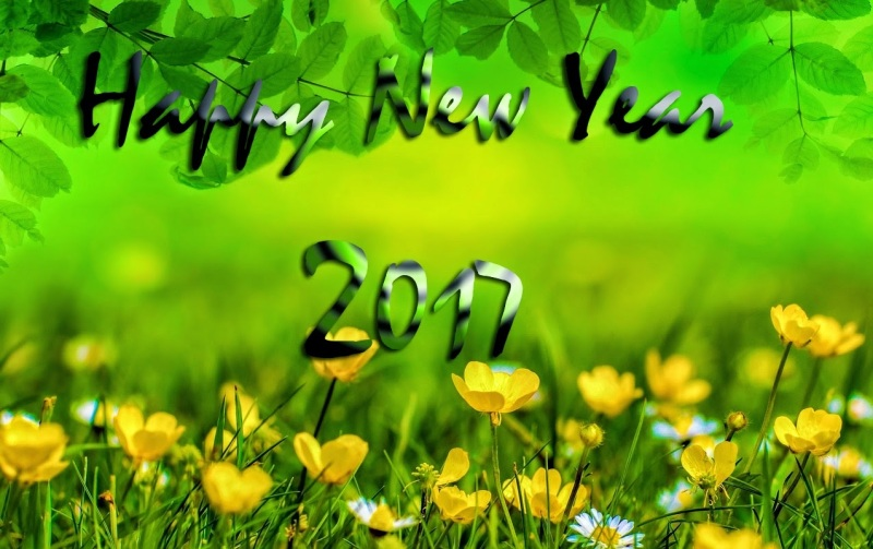happy-new-year-2017-wallpaper-6